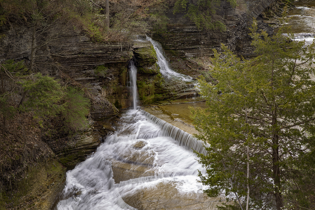 Upper Falls from Rim Trail in Tompkins County (photo)
