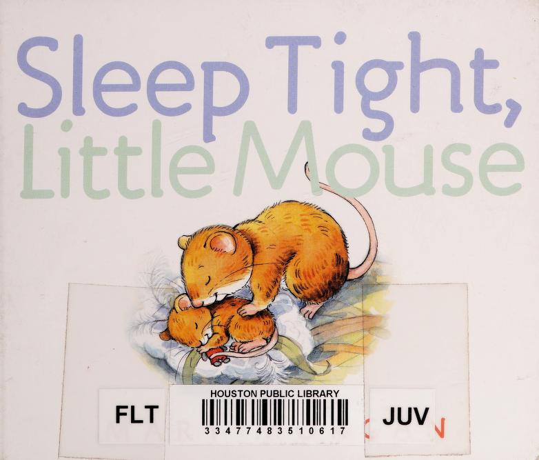 Sleep tight, little mouse by Morgan, Mary